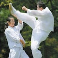 Thumbnail image for Taekkyeon gets UNESCO listing