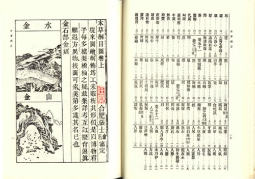 Post image for Traditional Chinese, Korean and Kampo Medicine: an introduction to the three main strands of Traditional Medicine in Northeast Asia