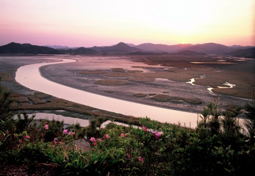 Post image for The Suncheon Bay Garden Expo 2013 opens in Jeollanam-do