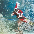 Thumbnail image for Sardine Santa at the COEX Aquarium
