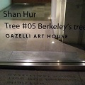 Thumbnail image for Berkeley's Tree – Hur Shan's installation in Berkeley Square