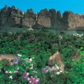 Thumbnail image for Mt Chilbo is the fourth DPRK biosphere reserve