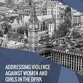 Thumbnail image for APPG provides summary of their conference on violence against women